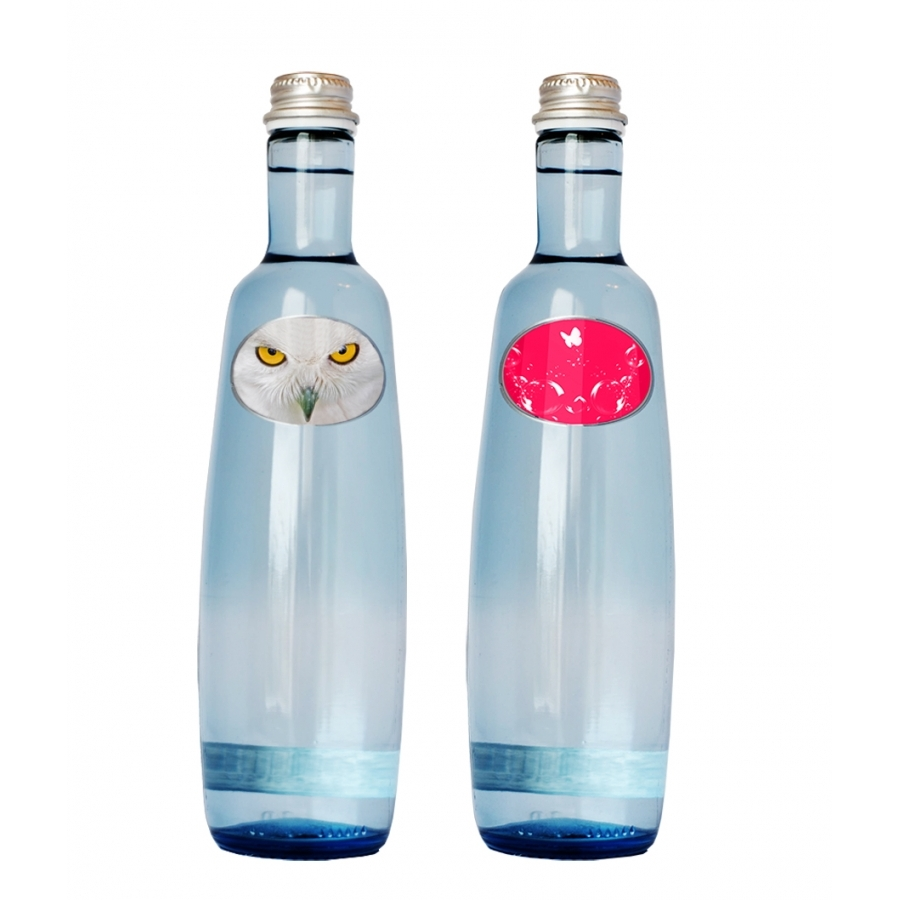 bouteille d 39 eau min rale en verre 50 cl boissons phosphorescence. Black Bedroom Furniture Sets. Home Design Ideas